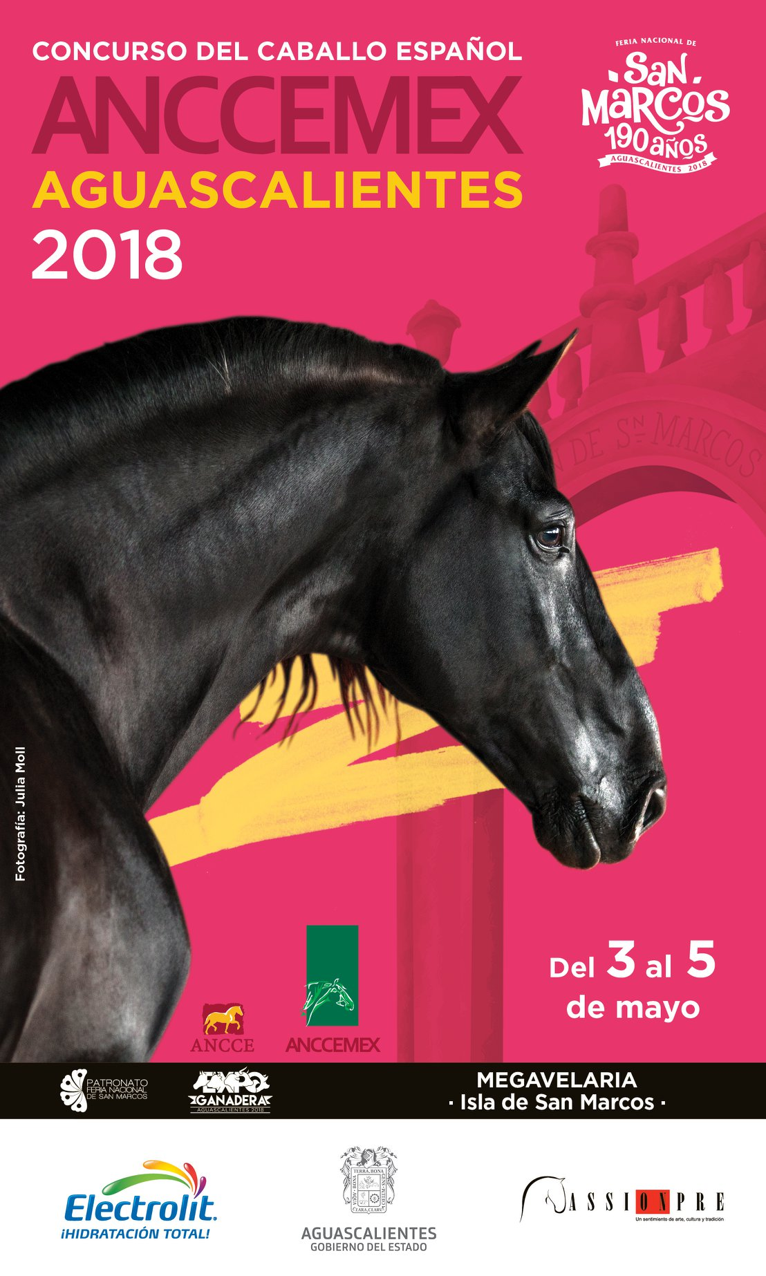 Schwarzer PRE Hengst auf Plakat für Pferdeausstellung