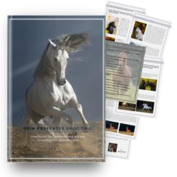 """Handbuch """"Das perfekte Fotoshooting"""" Julia Moll"""